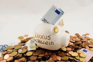 Euro-Hucha_De_Cerdito_De_Lujo
