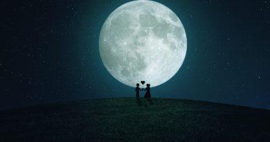 Luna de miel - Honeymoon